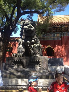 Confucus Temple, Dr. Charley Ferrer, Chronicles of China, Sex Education, Lama Temple